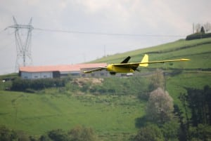 Fulmar UAV