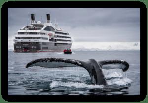 VideoFlow Maritime Cruise