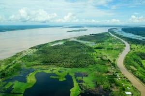 Amazon Brazil Amazonas