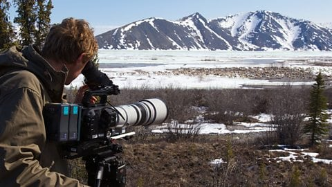 BBC, PBS Film Crews Rely on Globalstar Satellite Devices in Tracking Wildlife