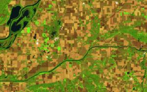 TellusLabs satellite imagery of crop fields. Photo: TellusLabs