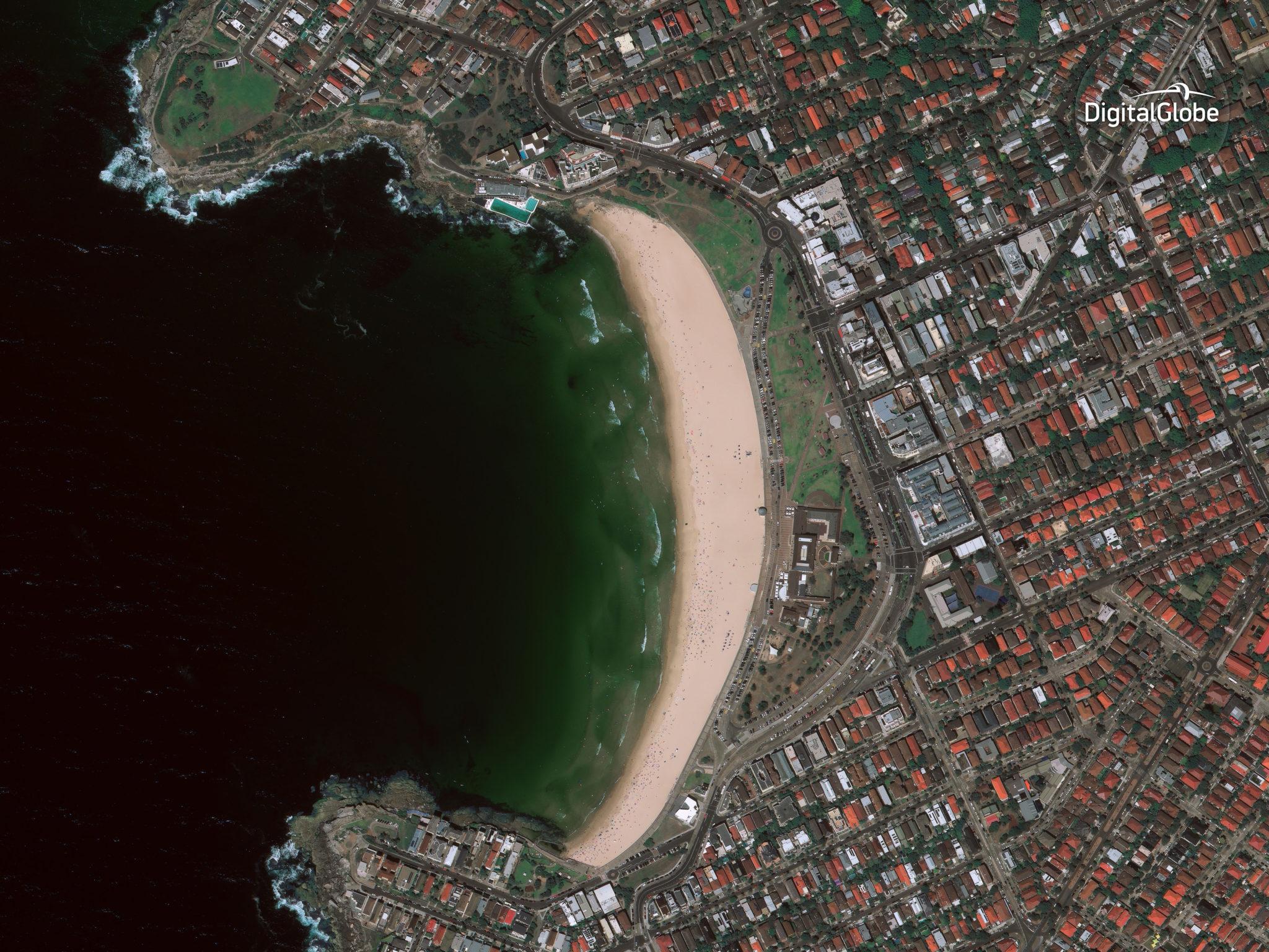 Sydney captured by the WorldView-4 satellite on Jan. 8, 2017. Photo: DigitalGlobe