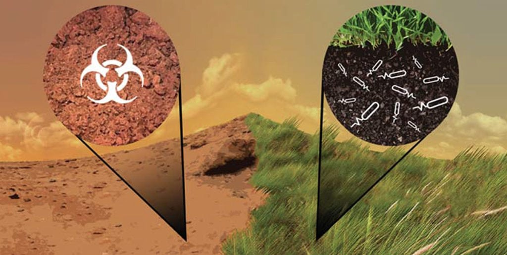 Concept of synthetic biology architecture to detoxify and enrich Mars soil for agriculture. Photo: NASA.