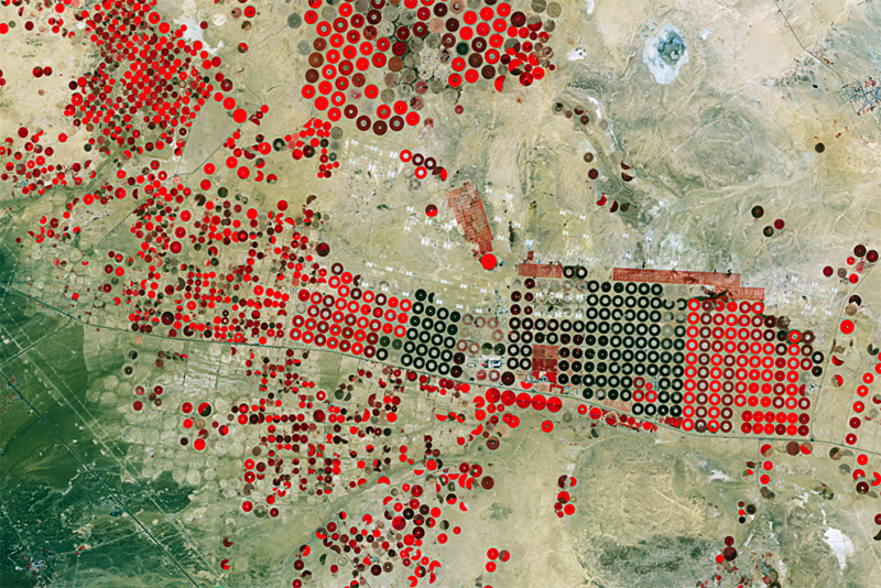 Satellite imagery of agricultural structures near Hail, Saudi Arabia. Brighter reds indicate more photosynthetically active vegetation. Photo: Deimos Imaging.