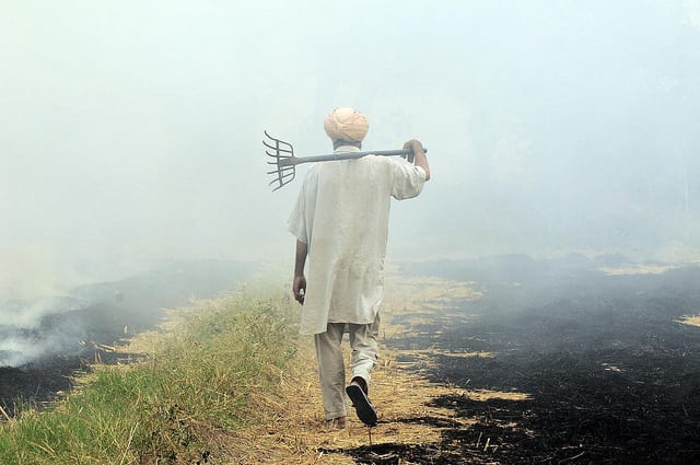 Burning of rice residues in Southeast Punjab, India, prior to the wheat season. Photo: Flickr/CIAT.