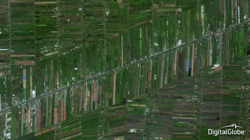 Satellite imagery and remote sensing techniques help both large- and small-scale farmers detect variability in crop health and soil conditions so they can better manage fields and maximize their yield. Photo: Bangkok, Thailand, October 14, 2014, WorldView-3, DigitalGlobe